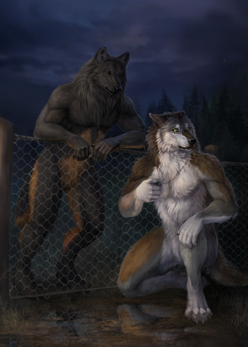 Werewolf Tale II by Wolnir                              Acting as a guide for Alex, this demostrates the general theme for the sequel to Werewolf Tale.                                                          Alex still being unsure of his new-found abilities and Shane coming to terms with his need to mentor Alex in how to properly hunt and survive.